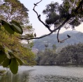 Kandy lake.Кirimuhuda.  නුවර වෑව, Sri Lanka