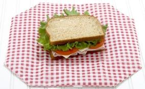 wrap-n-mat-reusable-sandwich-wrap-placemat-1